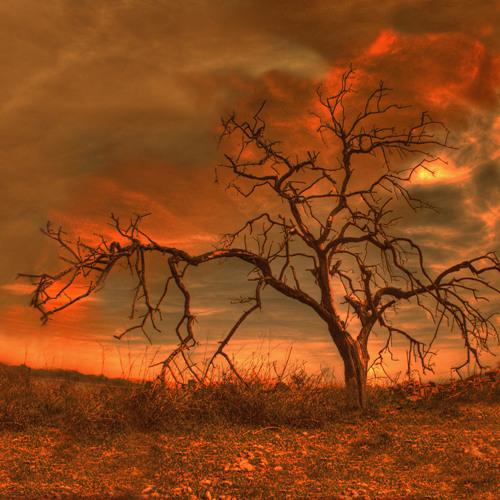 Dyer - Fire In The Sky