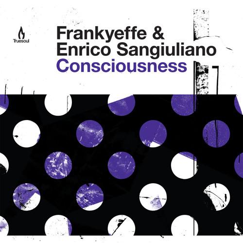 TRUE1238 A Frankyeffe & Enrico Sangiuliano - Consciousness - Original Mix - clip
