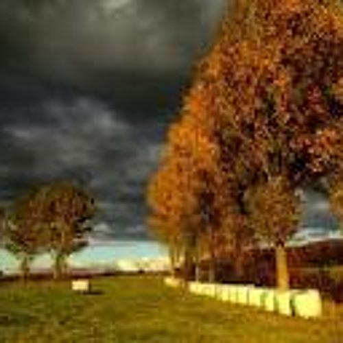 Herbstlicher Geschwindigkeitskern