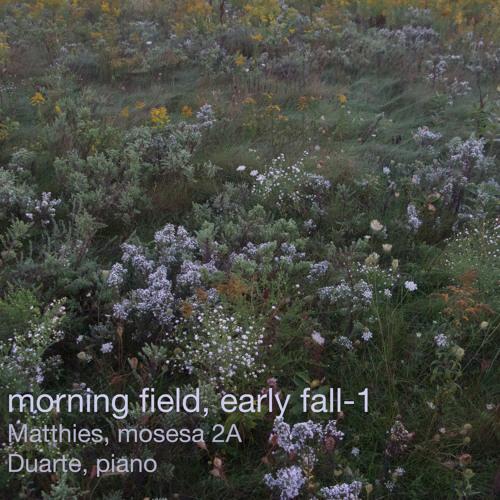 morning field, early fall-1
