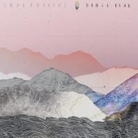 Snakadaktal - Dance Bear (Amtrac Remix)