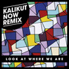 Hot Chip - Look at Where We Are (Kalikut Now RMX)