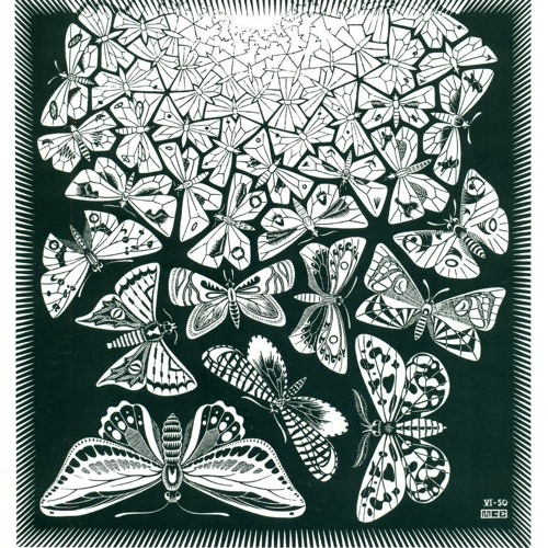 ° The SuMi Tree ° (Collaborations)
