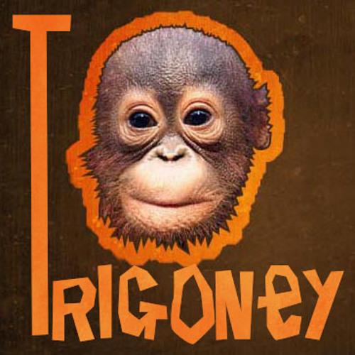 Trigoney Releases