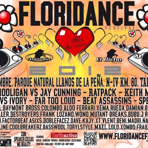 Dj heavy - floridance 2012