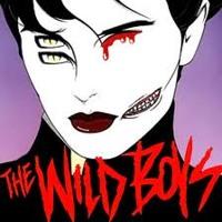 Duran Duran - WILD BOYS ( Cardiobeats Remix) 2012
