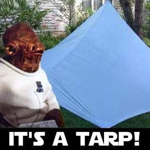 Trapped In the TaRP vol. 002