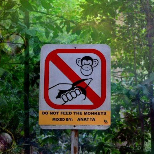 Anatta - Do Not Feed the Monkeys