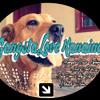 Biggie Smalls - Big Poppa (Vallejo Edit)