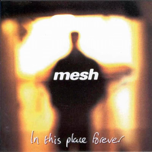 Mesh - I Don't Think They Know