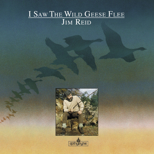 Jim Reid: I Saw The Wild Geese Flee