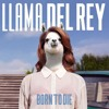 Born To Die (Lana Del Rey Cover) MP3 Download