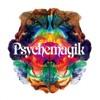 Dreams (Psychemagik Remix)