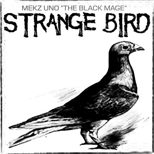 "Mekz Uno ""The Black Mage"" - ""Strange Bird"""