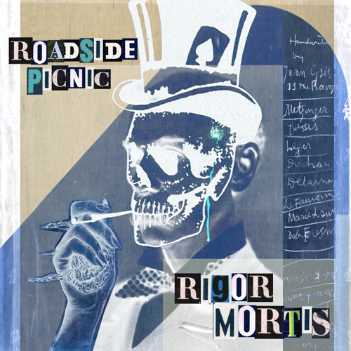 roadside.picnic - başka gün (HairyBo remix) [instrumental]