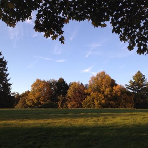Vermont Foliage Report: 9.25.12