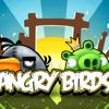 Angri birds-dj skilttle para los aficionados de angry birds-echo en tamazula