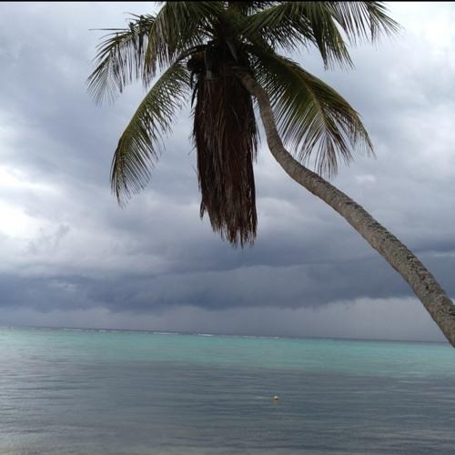 Shoreline Sounds at Bahía Punta Soliman