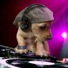 Alex Sensation Mega Mix--JAVIER MIX--JUJUY[1]