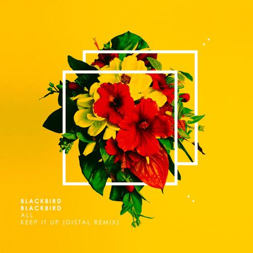 Blackbird Blackbird - All
