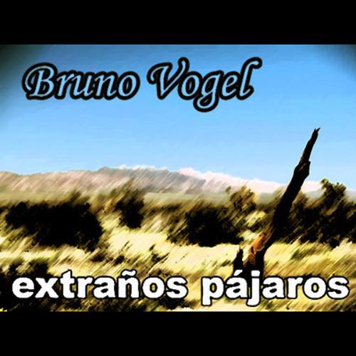 Bruno Vogel - Extraños Pájaros DEMO