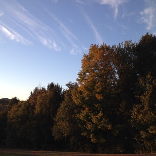 Vermont Foliage Report: 9.25.12 (30sec)