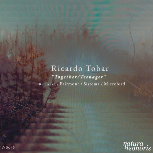Ricardo Tobar - Teenager (Original Mix)