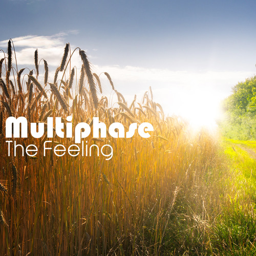 Multiphase - Tender Lies (Preview) - Yellow Sunshine Explosion Recordings