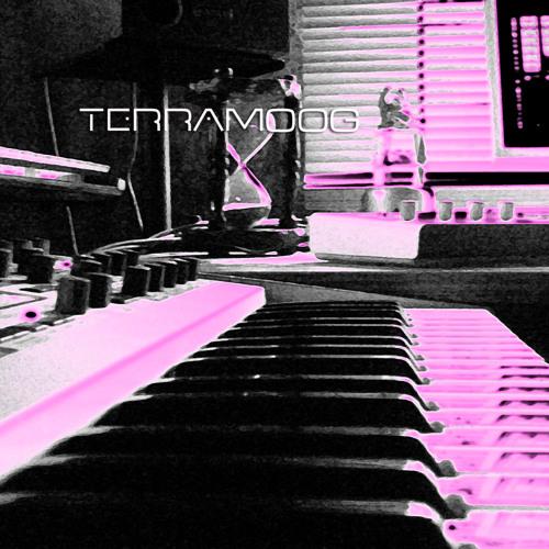 Terramoog -  SpaceDrops -  Deep Chuck -  Spring Point    -Promomix-