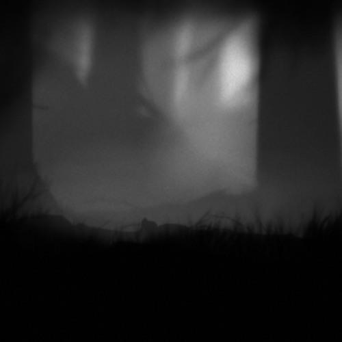 Kristian Kelvin - My Forest_Liveset@Dive Into 2 (Thomson/Ericson // ďakujem: Kevi Anavi, Violett)