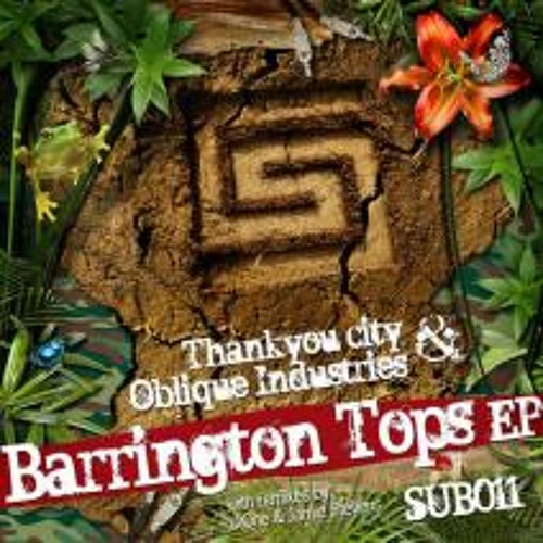 Thankyou City & Oblique Industries - Barrington Tops