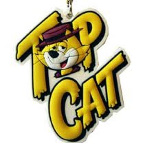 Top cat..NameLessMuzic ...