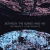 Between the Buried and Me - Bloom