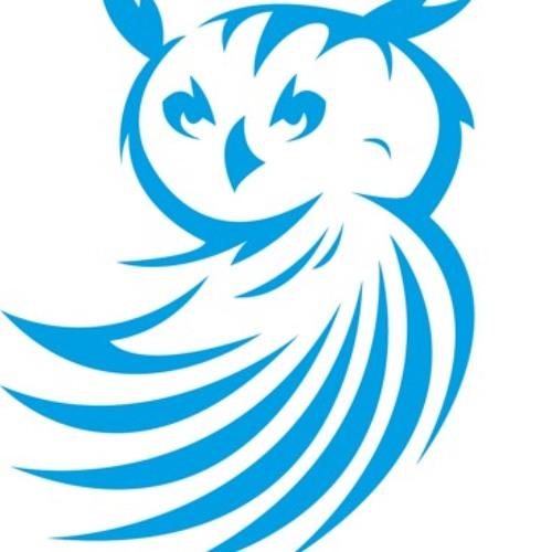 BlueOwl - Huma Bird