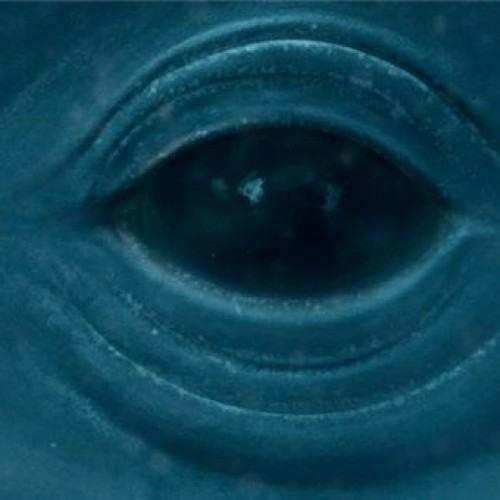 Frank Ocean - Blue Whale Instrumental