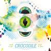 Crocodile 20
