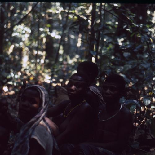 BayAka women singing yeyi, Central African Republic