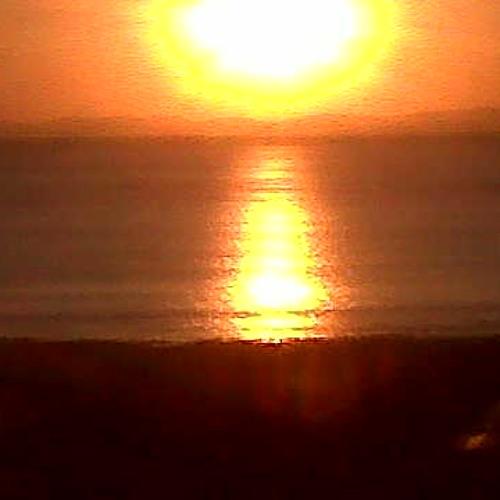 Skankin Till Sunset