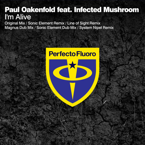 Paul Oakenfold feat Infected Mushroom - I'm Alive (Sonic Element Remix)