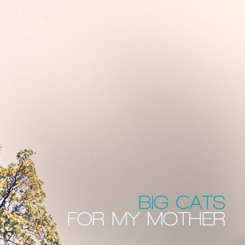 """""""One"""" by Big Cats!"""