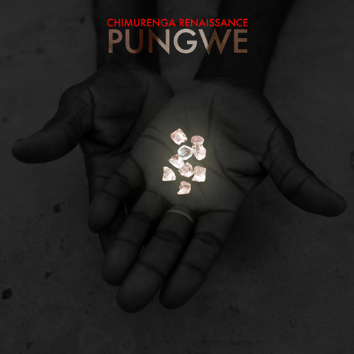 "Chimurenga Renaissance ""Pungwe"" Mix-Tape feat. Chief Boima"