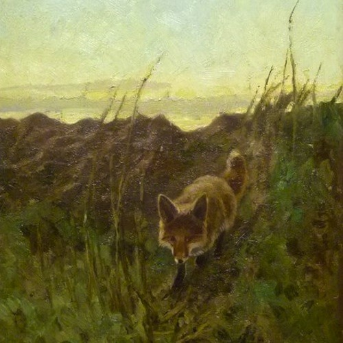 Der Fuchs kommt..