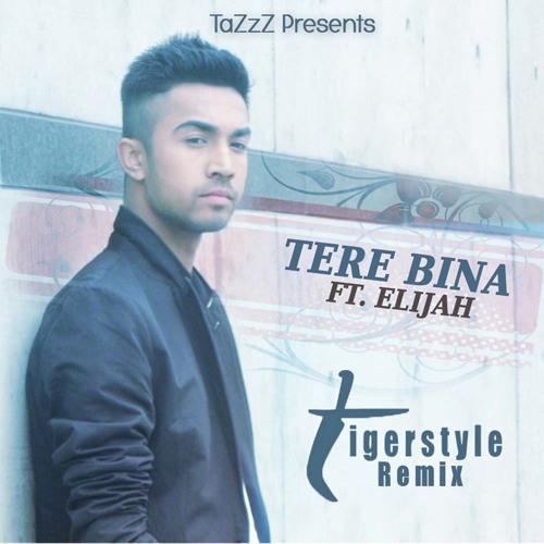 TaZzZ feat. Elijah - Tere Bina (Tigerstyle Remix) SNIPPET