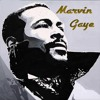 Marvin Gaye,  I Heard It Through The Grapevine - With a Twist - nebottoben