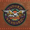 Sweet home alabama tribute to Lynyrd Skynyrd. acoustic cover