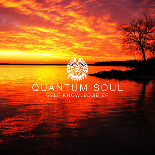 D. Quantum Soul - Self Knowledge (Out Now On Self Knowledge EP Tribe12 8th October 2012)