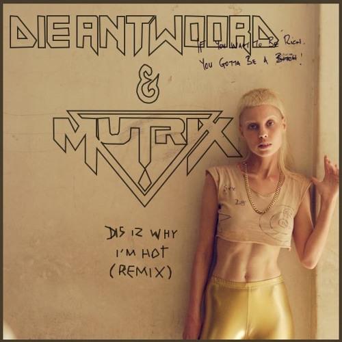 Dis Iz Why I'm Hot by Die Antwoord (Mutrix Remix) - Dubstep.NET Exclusive