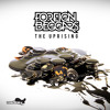 Download Foreign Beggars