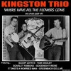 Where Have All The Flowers Gone - Kingston Trio cover