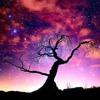 Enigmasa (SJE Music V's HIMCHANsound) - SJE Extended Version ***FREE DOWNLOAD***